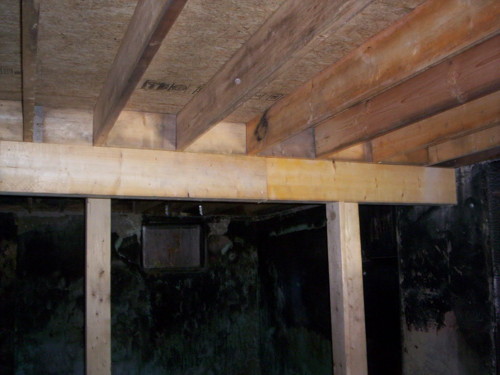 New Floor Joists and Plywood